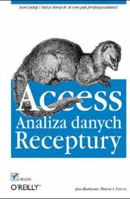 ebook Access. Analiza danych. Receptury