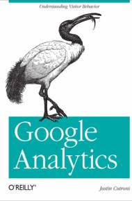 ebook Google Analytics