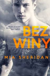ebook Bez winy