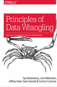 ebook Principles of Data Wrangling. Practical Techniques for Data Preparation