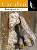 ebook Pole garncarza