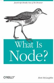 ebook What Is Node?