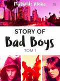 ebook Story of Bad Boys