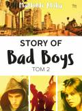 ebook Story of Bad Boys 2