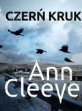 ebook Czerń kruka - audiobook