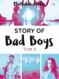 ebook Story of Bad Boys 3