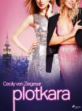 ebook Plotkara