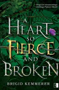 ebook A Heart So Fierce and Broken