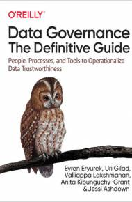 ebook Data Governance: The Definitive Guide